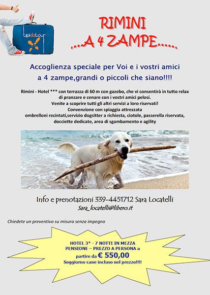 Rimini a 4 zampe