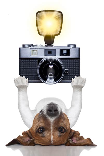 centerzoo selfie foto