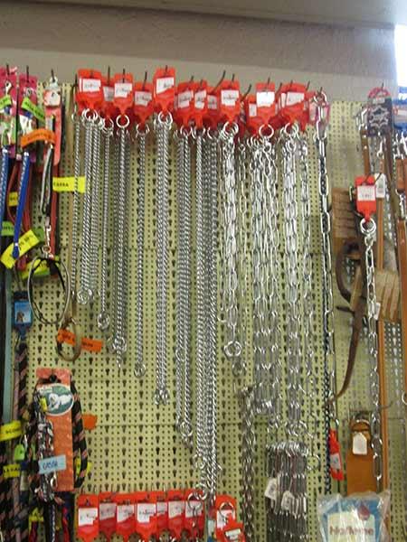 guizaglio-e-collare-catena