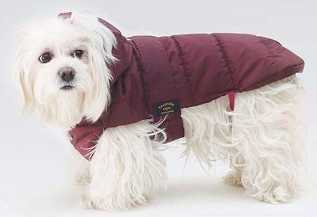 cappotto-trapuntato