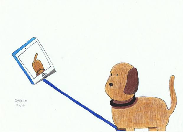 funny-dog-selfie-stick
