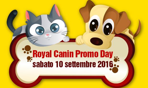 promo-day-royal-canin