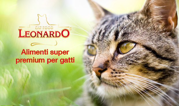 leonardo-alimenti-gattoo