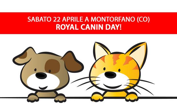 royal-canin-day-centerzoo