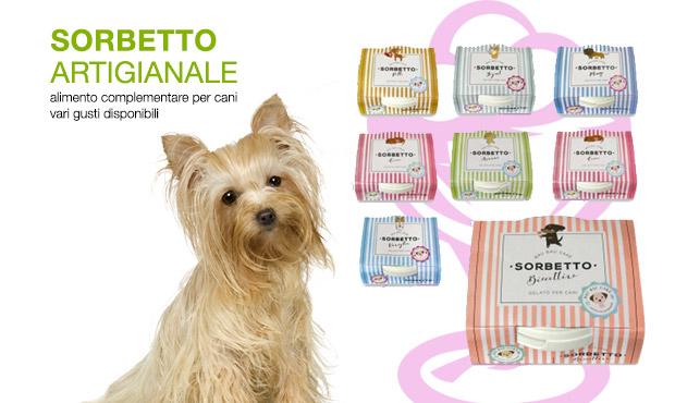 SORBETTO-cani-centerzoo-lariano