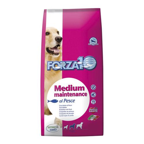 forza-10-cane-medium