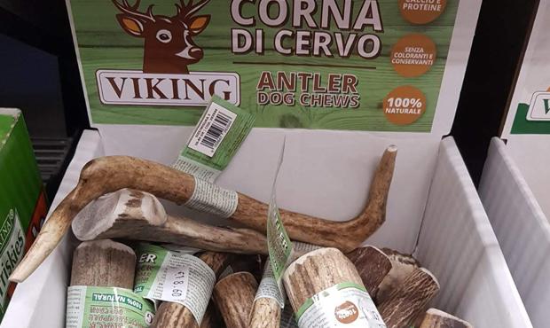 viking-corna-cervo-centerzoo-lariano