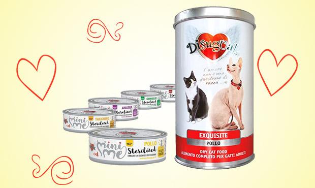disugual-centerzoo-umido-pet-food-gatti
