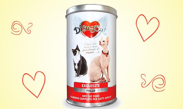 disugual-pet-food-gatti