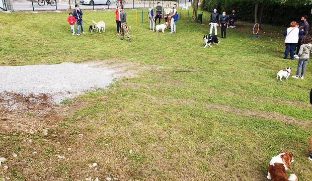 Centerzoo Lariano regala giochi per Area Cani di Montorfano